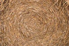 Texture de paille Photo stock
