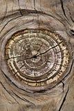 Texture de panneau en bois photographie stock
