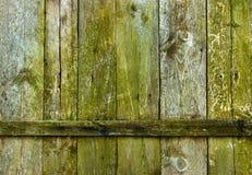 Texture de panneaux en bois Image stock