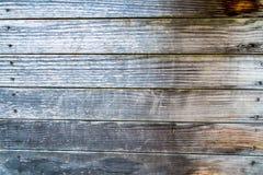 Texture de panneaux en bois Photo libre de droits