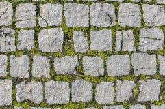 Texture de pavé rond Photos libres de droits