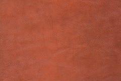 texture de peau Photographie stock