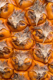 Texture de peau d'ananas Photo libre de droits