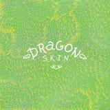 Texture de peau de dragon Illustration de vecteur Photos libres de droits