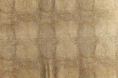 Texture de peau de serpent d'or Photos libres de droits