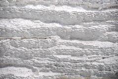 Texture de pierre à chaux Images libres de droits