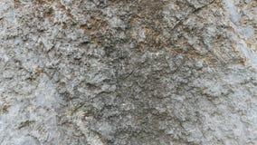 Texture de pierre de chaux de Debnik Photographie stock
