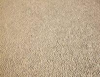 Texture de piste de chemin Photo libre de droits