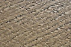 Texture de plage Photos libres de droits