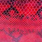 Texture de plan rapproché de cuir véritable, de relief sous la peau un reptile, modèle lumineux entraînant place photos libres de droits