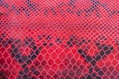 Texture de plan rapproché de cuir véritable, de relief sous la peau un reptile, modèle lumineux entraînant Pour le fond photo libre de droits