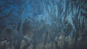 Texture de plan rapproché de Frostwork Photos stock