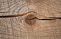 Texture de plan rapproché de panneau en bois non coloré Photographie stock libre de droits