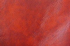 Texture de plan rapproché en cuir véritable, avec la ride, pli, couleur brune orange, surface de fond photographie stock libre de droits