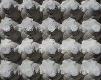 Texture de plateau d'oeufs Photographie stock