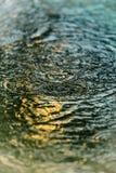 Texture de pluie photo libre de droits