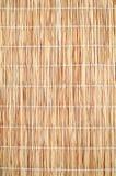 Texture de Reed Image libre de droits