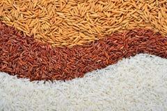 Texture de riz Photos stock