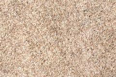 Texture de riz non-décortiqué image libre de droits
