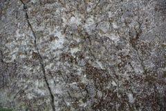 Texture de roche Photo libre de droits