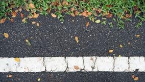 Texture de route goudronnée avec l'herbe verte et les feuilles en baisse oranges Image libre de droits