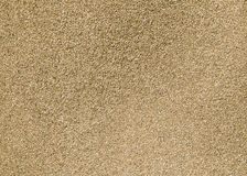 Texture de sable - définition élevée Photos stock