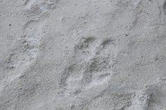 Texture de sable, fond Image libre de droits