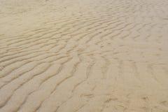 Texture de sable de mer humide côtier photo stock