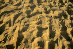 Texture de sable sur la plage Photos libres de droits