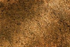Texture de sciure Photos stock