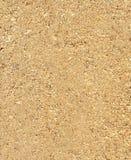 Texture de sciure au fond Image libre de droits