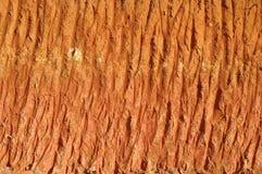 Texture de section de saleté Photo stock