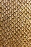 Texture de serpent d'or Photos libres de droits