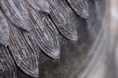 Texture de statue de pierre de Singha images stock