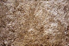 Texture de tapis brun de tissu Image libre de droits