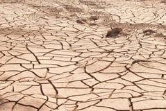 Texture de terre sèche dans le désert. Image libre de droits