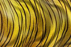 Texture de tigre Photographie stock