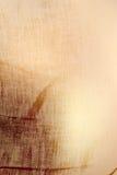Texture de toile de détresse Images stock