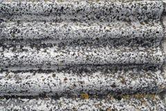 Texture de toit Photographie stock libre de droits
