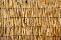Texture de toit de canne Images libres de droits