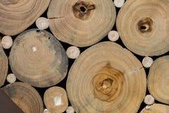 Texture de tronçon d'arbre Photographie stock