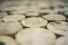Texture de tronçons d'arbre Photos libres de droits