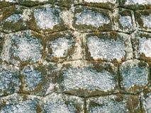 Texture de vieille pierre Mousse sur le mur Photo étroite images stock