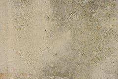 Texture de vieille surface en béton avec de la mousse photos libres de droits