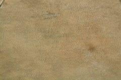 Texture de vrai cuir bronzée pour le tambour images stock