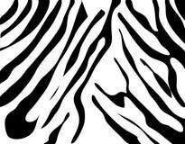 Texture de zèbre noire et blanche Photographie stock libre de droits
