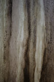 Texture of decorative plaster painted like wood Royalty Free Stock Photography