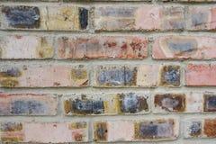 Texture des briques rouges comme fin de fond  Images stock