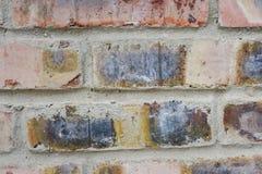 Texture des briques rouges comme fin de fond  Photos libres de droits