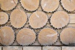Texture des cercles en bois sur le fond des conseils en bois Photographie stock libre de droits